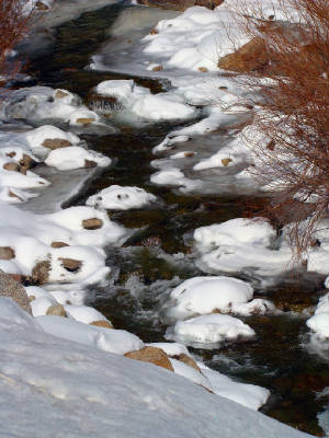 winter bldr creek